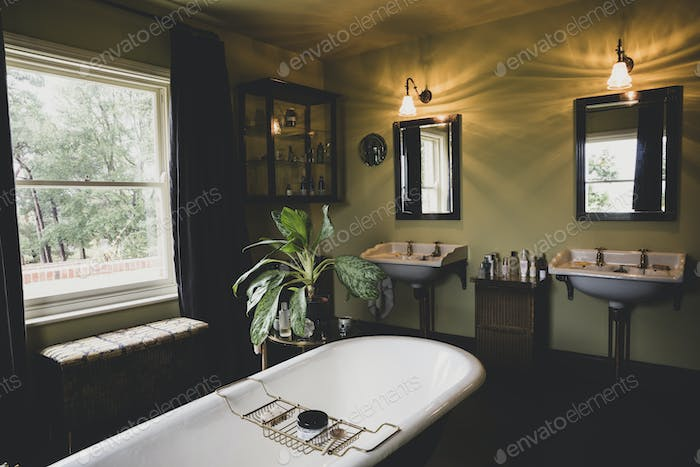Interior view of bathroom with black mirrors over two Victorian wash stands, sash window and roll