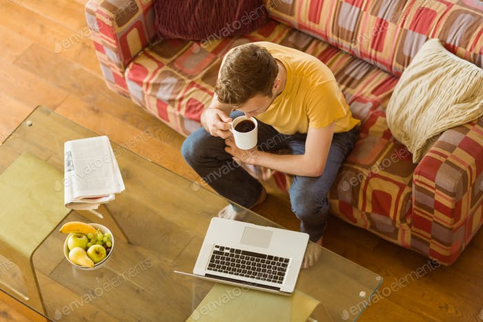Young man using laptop on his couch at home in the living room