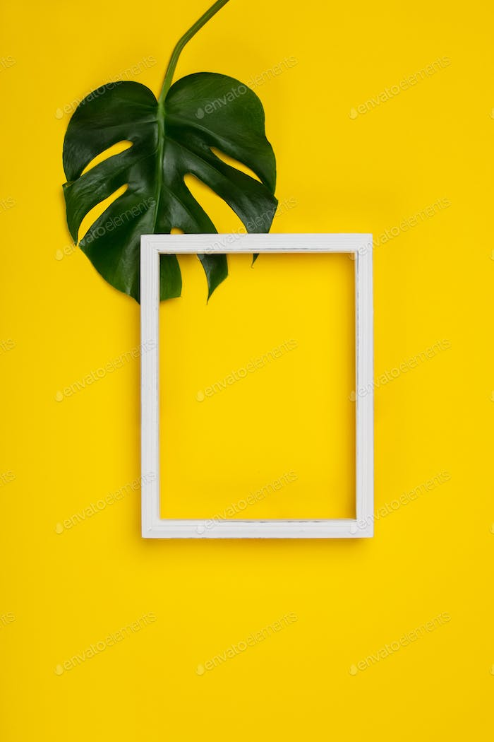 Creative flat lay with tropical plant and white frame for your t