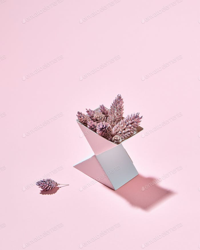 Cardboard box triangular with cones presented on a pink background with a shadow and copy space