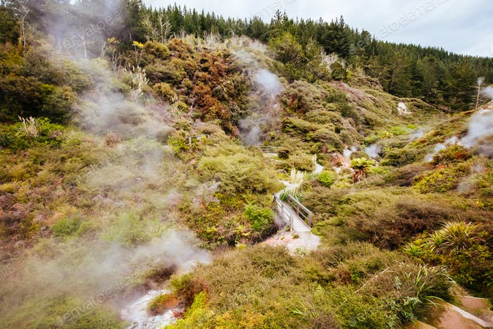 The volcanic and fascinating landscape of Wairakei Natural Thermal Valley near Taupo in New Zealand