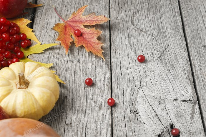 Autumn harvest and thanksgiving card background