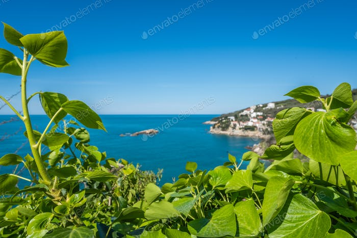 The green coast of Adriatic sea in Ulcinj