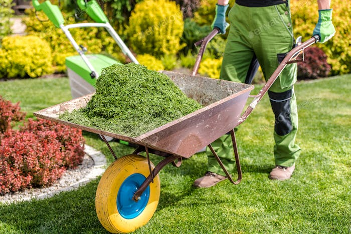 Removing Freshly Mown Grass