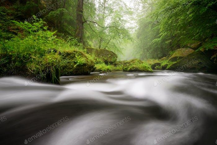 Rainy autumn river at Edmund Gorge of Bohemian Switzerland National Park, Czech republic.