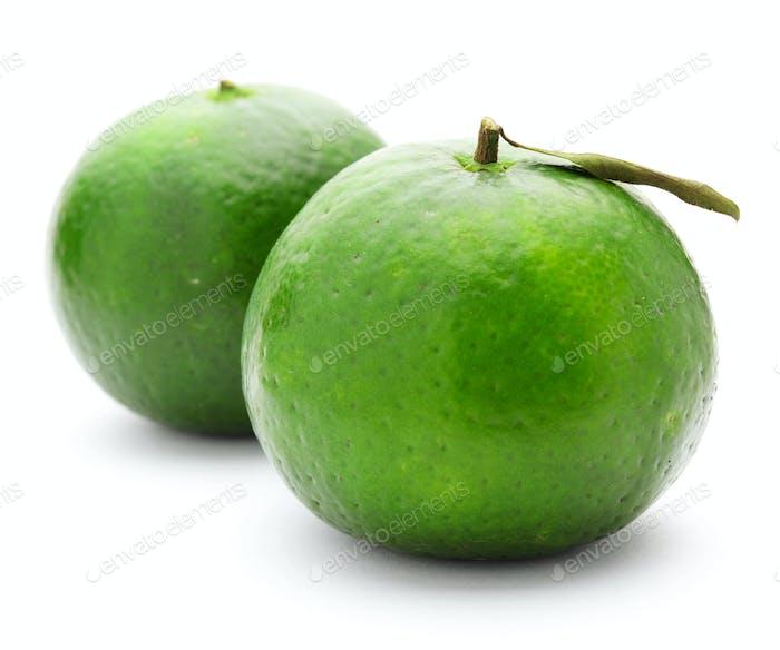 grüne Zitrusfrüchte