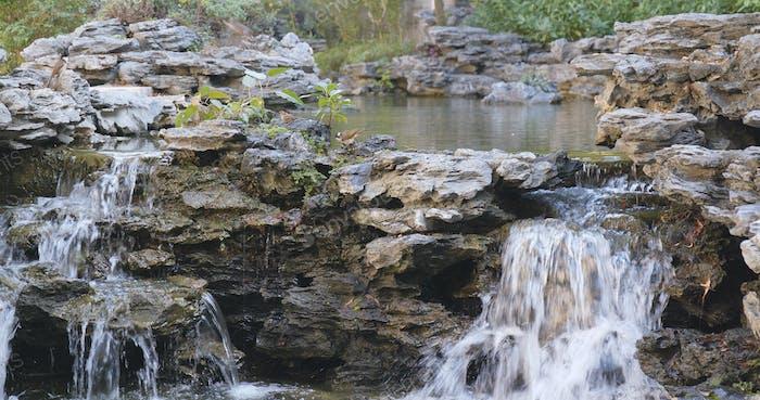 Wasserteich im Garten, Chinesischer Garten