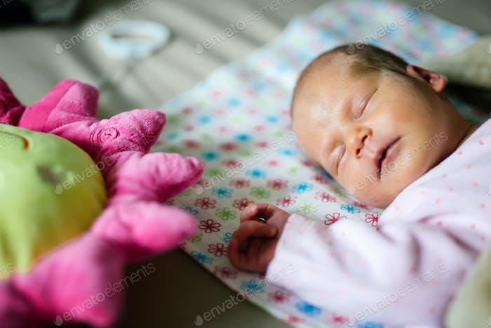 Newborns need a lot of rest