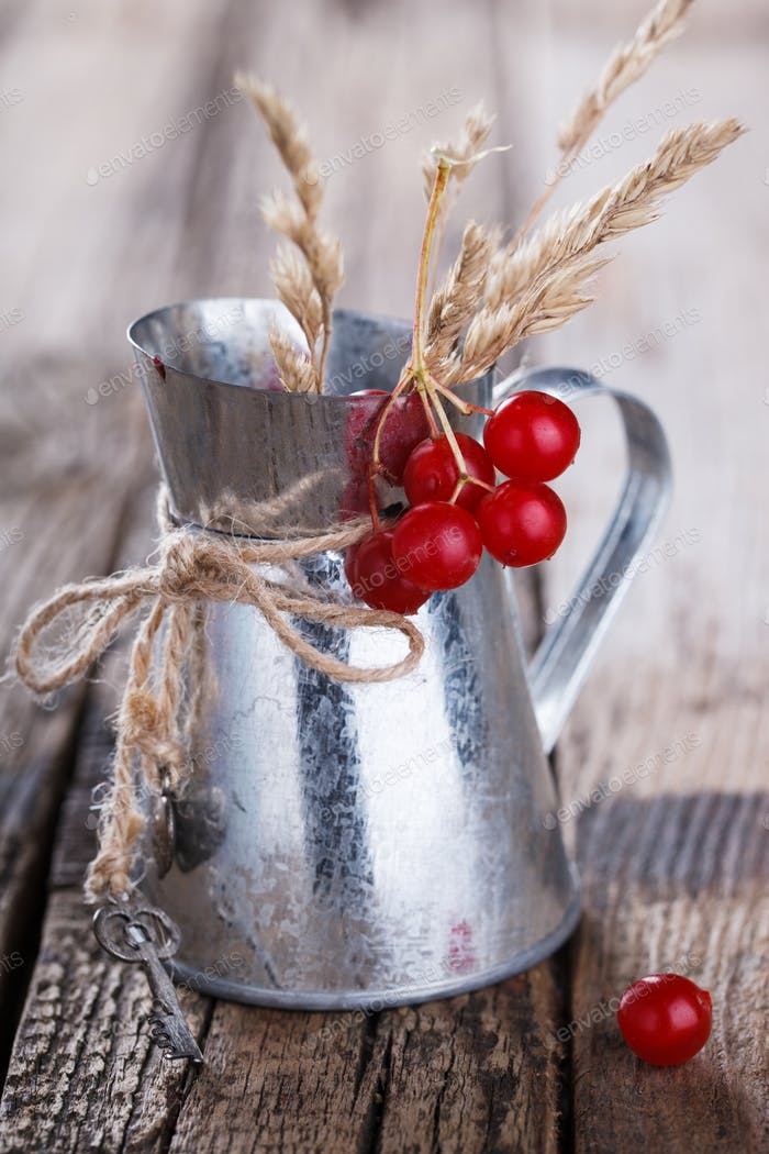Cranberries in an iron jug,autumn still life.