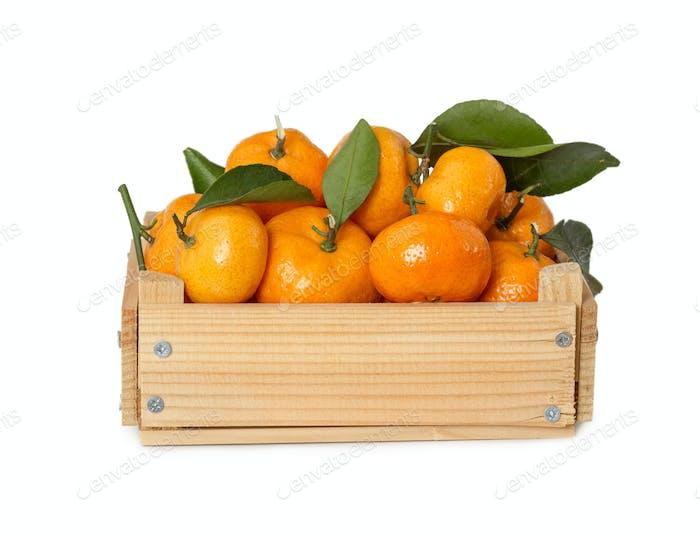 Wooden box with fresh mandarins
