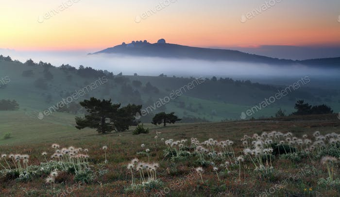 Misty sunrise in the mountain