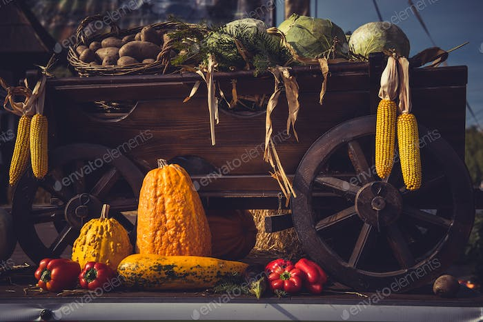 Autumn harvest. Vintage cart full with freshly picked vegetables. Still life
