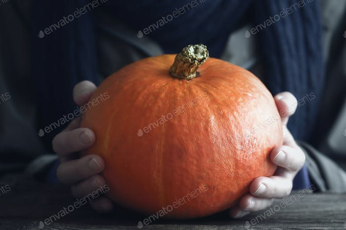 Orange pumpkin in the hand horizontal