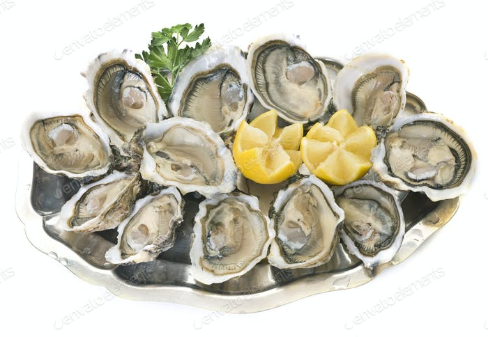 oysters on silver tray