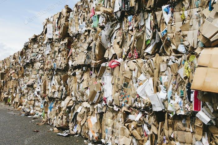 Recycling-Anlage mit Bündeln aus Karton sortiert und für das Recycling gebunden.