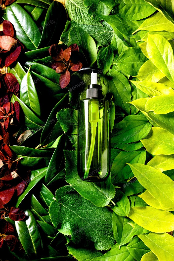 Empty green plastic bottle for soap on background made of green leaves