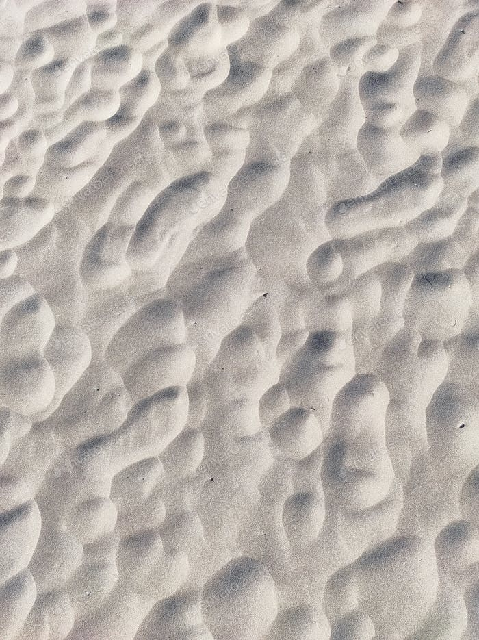 Abstract and textured image of a close up in the beach