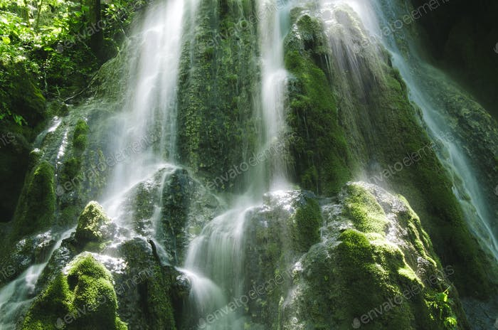Detalle de cascada de la selva