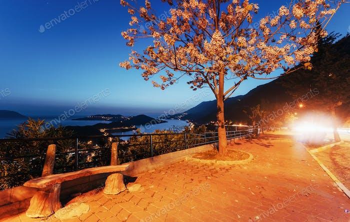 Schöne Landschaft Lampen und Felsen entlang der Küstenstraße entlang der schönen Küste bei Sonnenuntergang