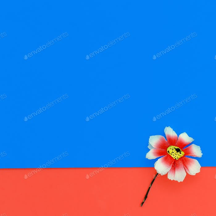 One Flower. Minimal design fashion