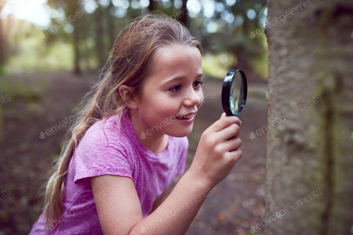 Girl At Outdoor Activity Camp Studying Tree Bark With Magnifying Glass