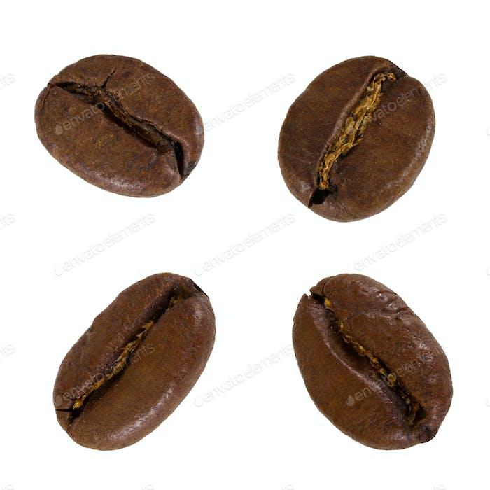 Set of grain of coffee
