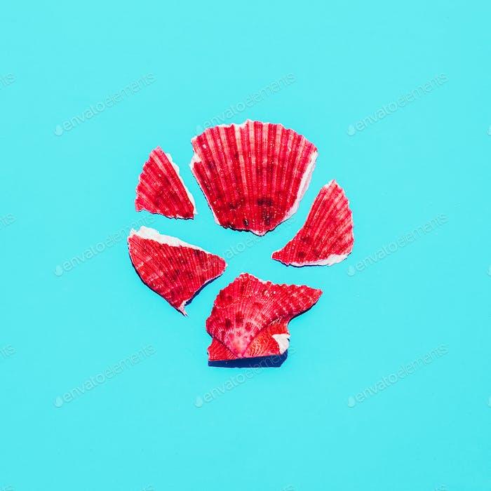 Shell fragments Minimal art design