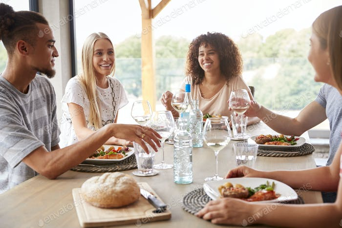Multi ethnic group of five young adult friends at a dinner party