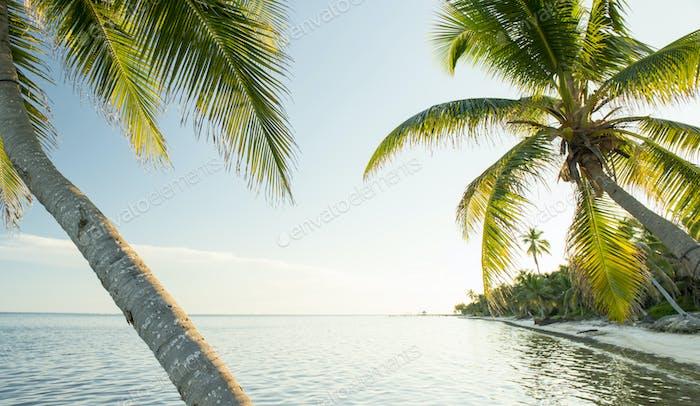Caribbean Beach Belize