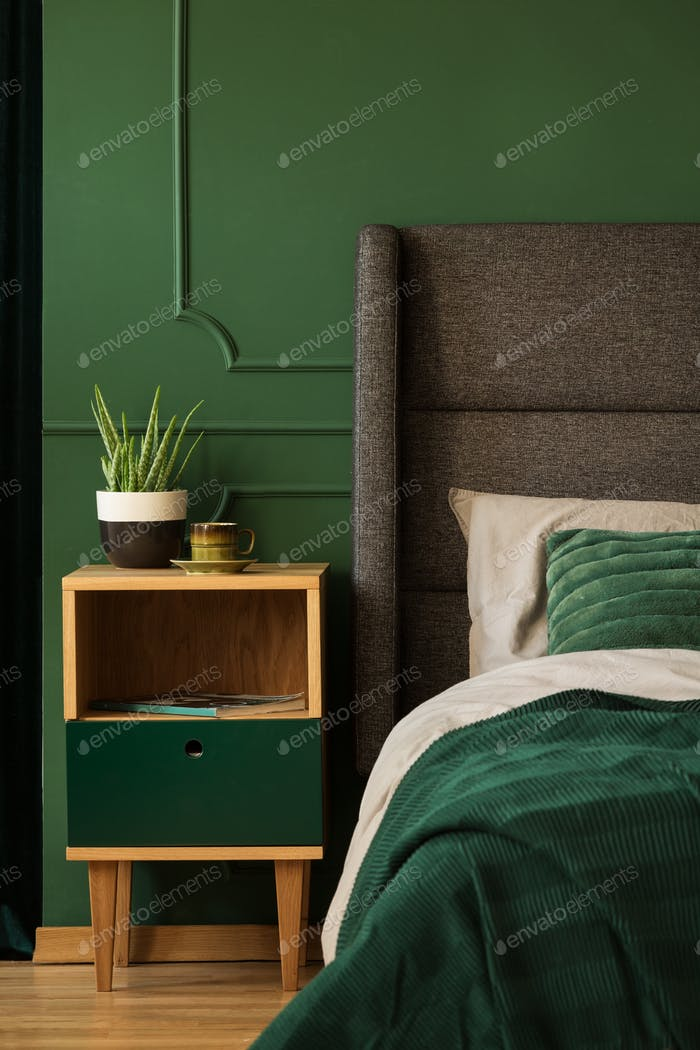 Real photo of a bedside table next to a bed in a dark green bedr