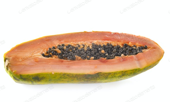 papaya in studio