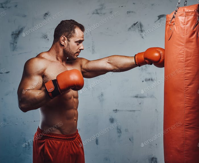 Bodybuilder training and punching bag with gloves
