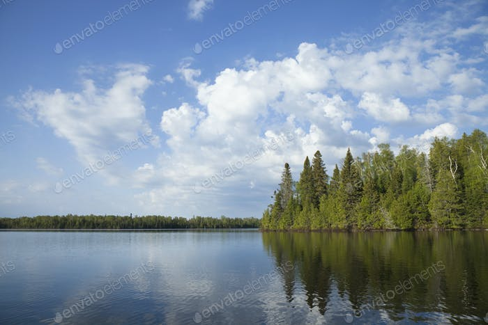 Northern Minnesota lake with trees along the shore and bright clouds on a calm morning
