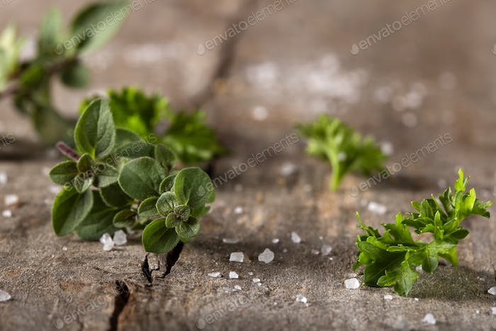 Thyme and curly parsley