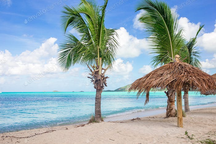 Idyllic tropical beach with white sand, turquoise ocean water and big palm trees