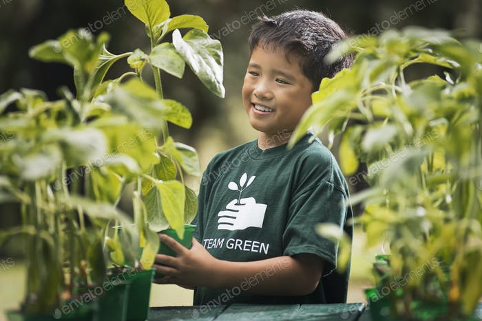A boy with young plants in a plant nursery.