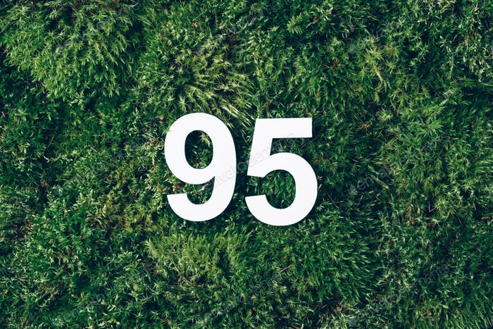 Green grass, digit ninety-five. Birthday greeting card with inscription 95.