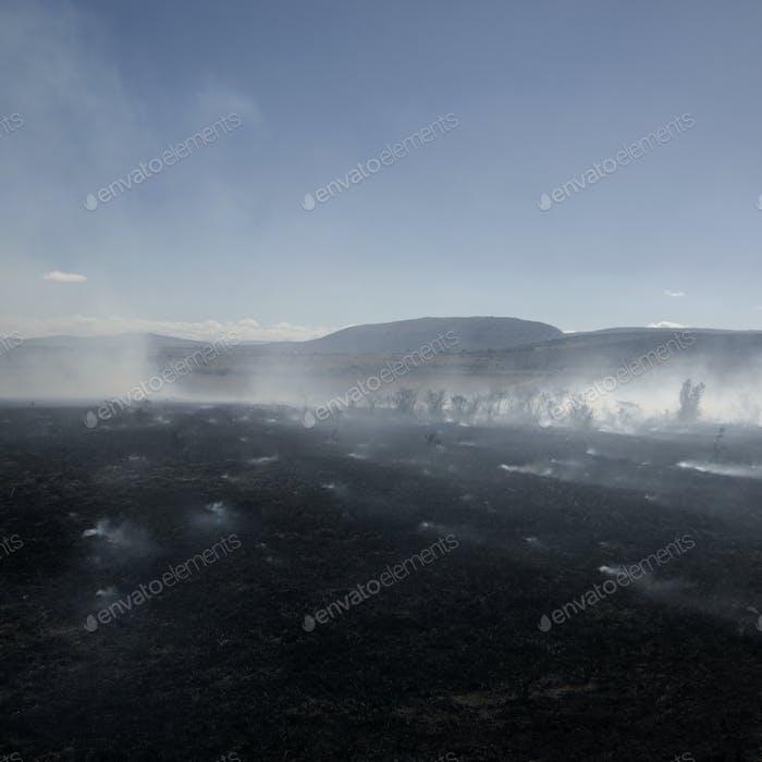 Fire at Masai mara Kenya