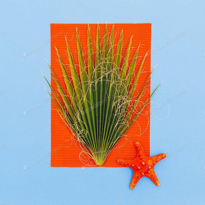 Marine tropical style. Palm tree and starfish. Minimal art