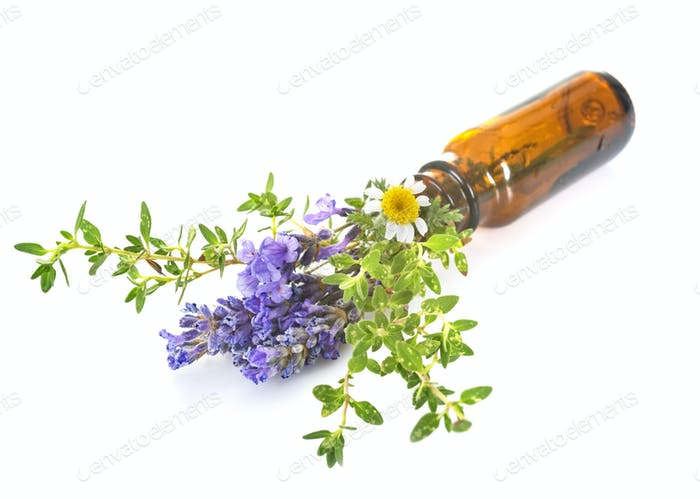 essential oils in studio