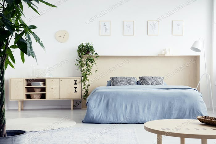 Real photo of white bedroom interior with double bed with blue s