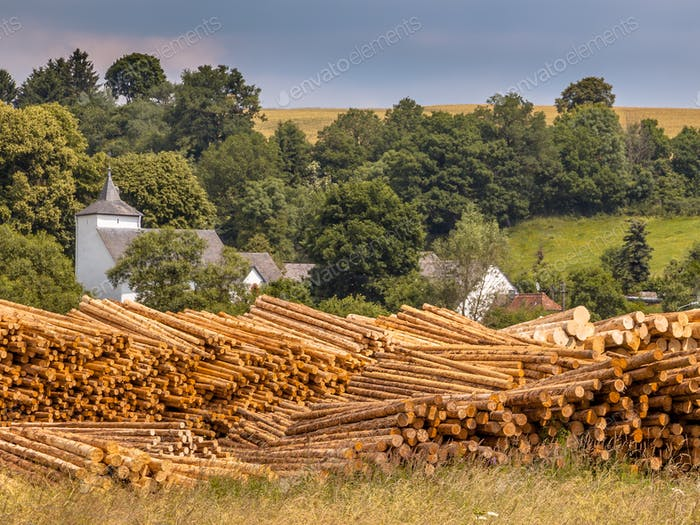 Piles of Wood Timber Trunks at a  in Germany