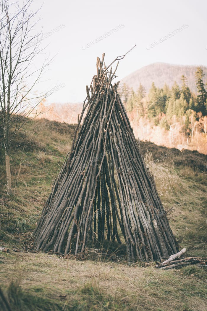 Primitive shelter made from wood