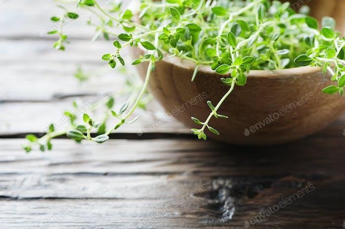 Frischer grüner Thymian auf dem Holztisch