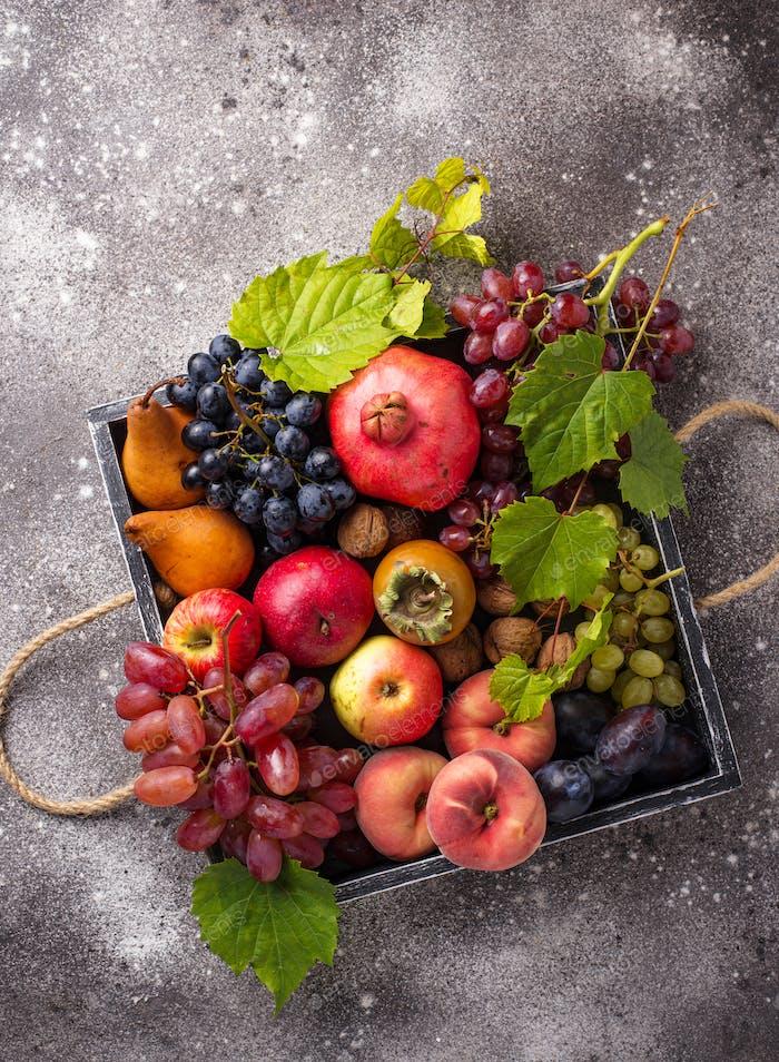 Verschiedene Herbstfrüchte. Erntekonzept