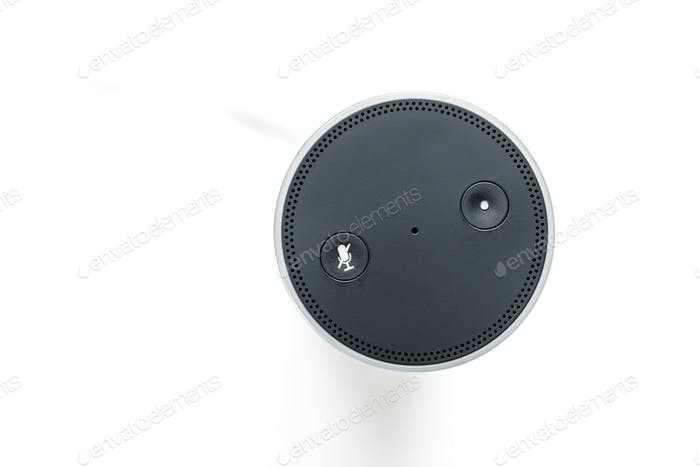 smart home device with voice assistant
