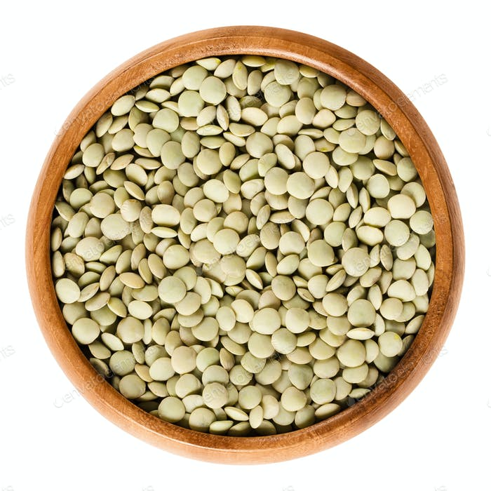 Green lentils in wooden bowl over white