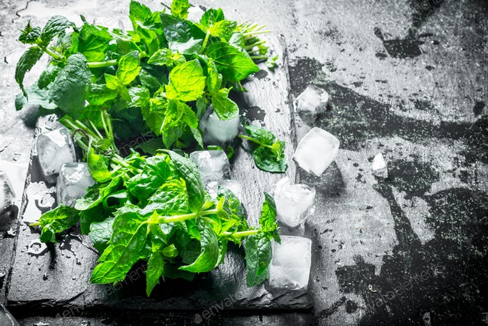 Mint with pieces of ice on a stone Board.