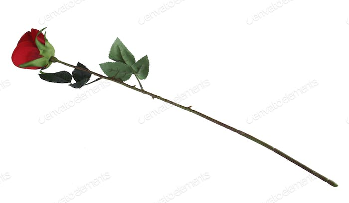 Red Artificial Rose Isolated