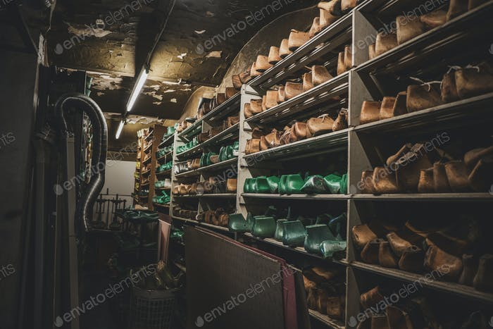Storage of different shoe forms